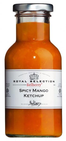 Spicy Mango Ketchup