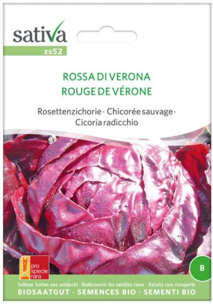 Bio Saatgut - Radicchio Rossa di Verona
