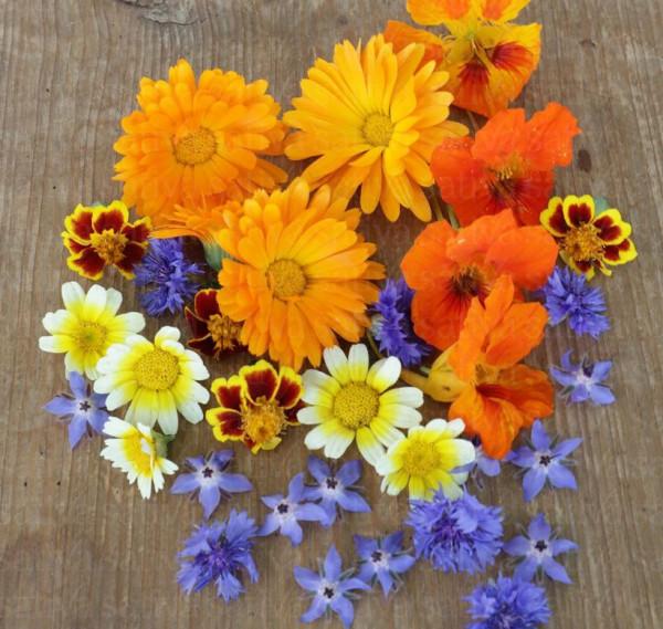 Bio Saatgut - Essbare Blüten